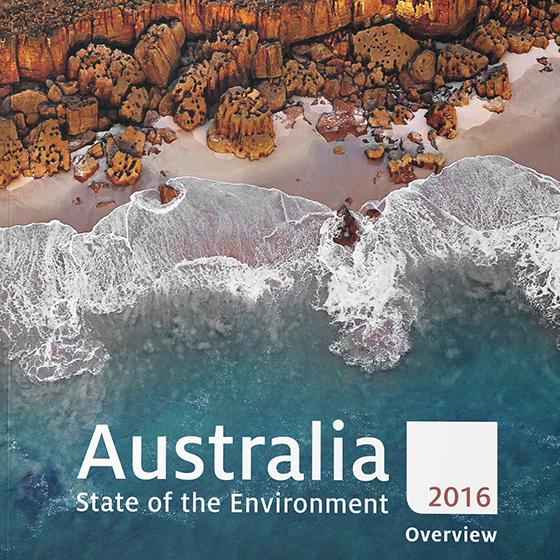 Cover of SOE 2016